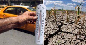 6 Terribles consecuencias que trae consigo el cambio climático
