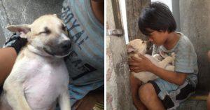 Niño sin hogar adopta a perrito abandonado y se vuelven inseparables